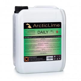Активный шампунь для бесконтактной мойки Daily 5 кг ArcticLime